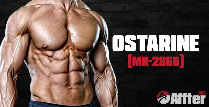 Ostarine (MK-2866) - Don't Buy Ostabolic Unitl You Read This Review!