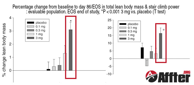 ostarine results (before and after) in clinical study